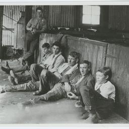 Shearers at Furner
