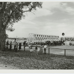 Horse racing at Victoria Park, South Australia