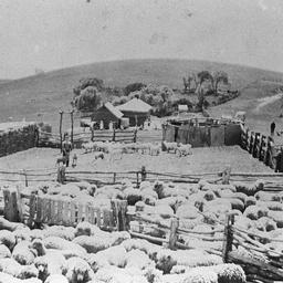 Delabole Farm at Willunga