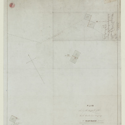 Plan shewing the Property of the South Australian Company in the Mount Gambier District [cartographic material]