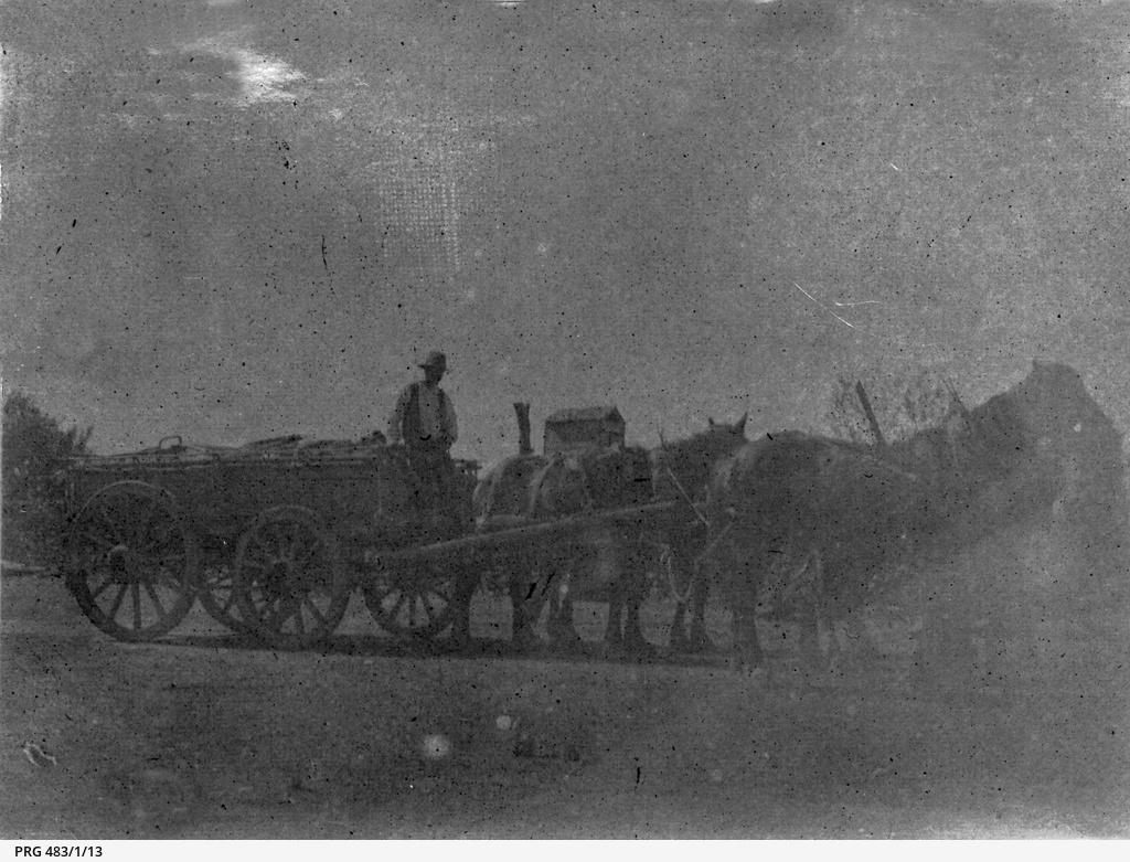 Wagon team