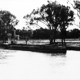 'Argo' (barge) on the Murray River