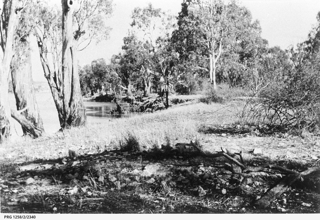 Remains of Eyre's original campsite on the Murray at Moorundie