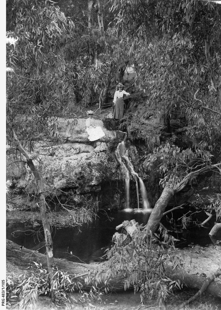 Scene by a creek