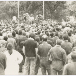 Crowd gathered at a demonstration