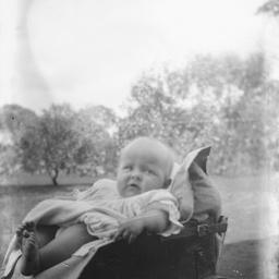 Child in a pram in the garden