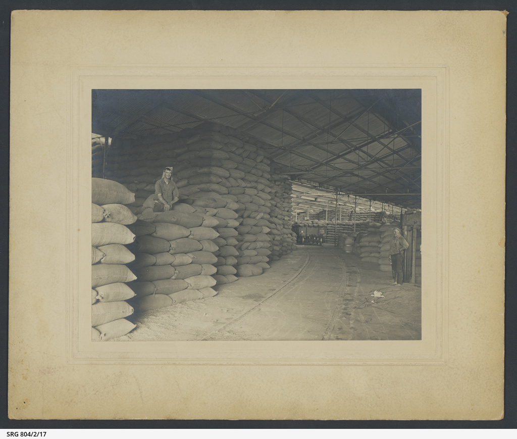 Wheat shed