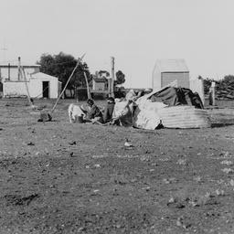 Aborigines' shelter at Oodnadatta