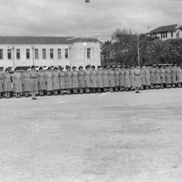Parade of Transport Services members