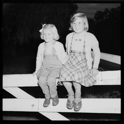 Two young girls sitting on a fence