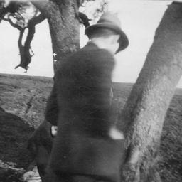 Man near tree