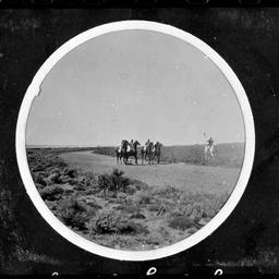 Horseracing, Eucla