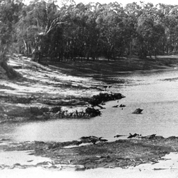 Low river with mud flats exposed opposite Echuca Wharf
