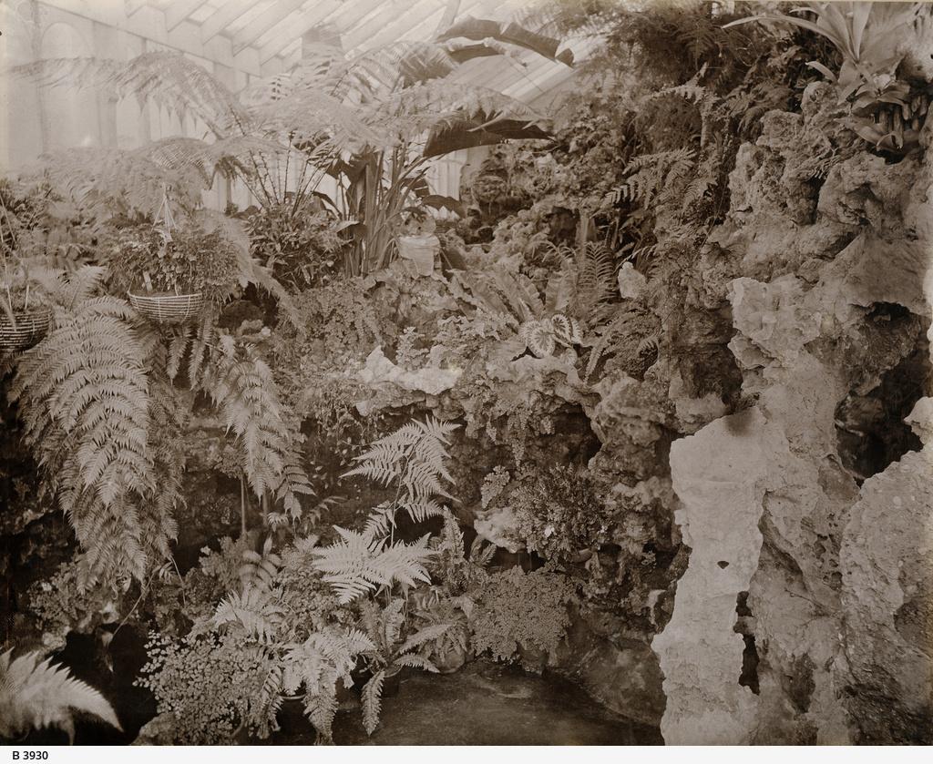The Acacias, Marryatville