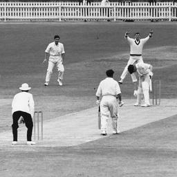 Cricket game in progress