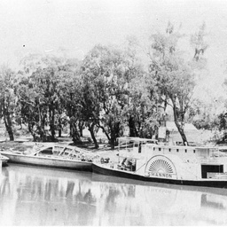 P.S. Shannon and two barges at Echuca
