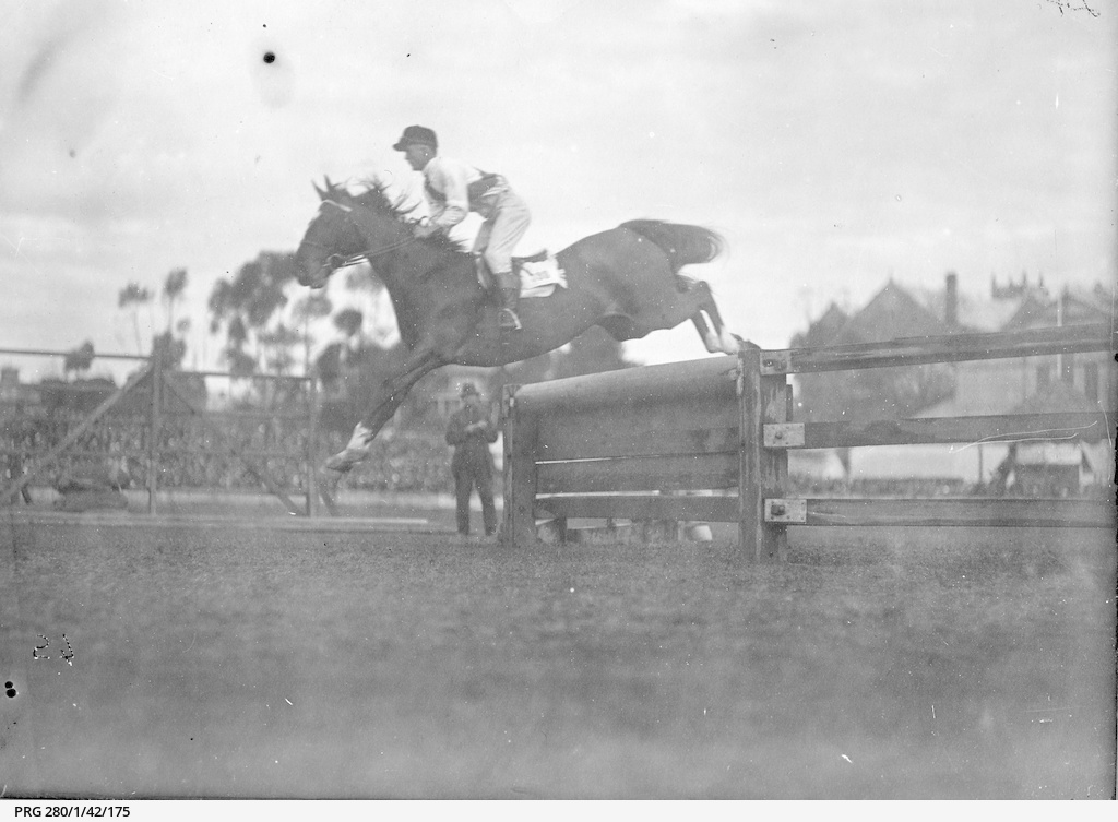 Show jumping in Adelaide
