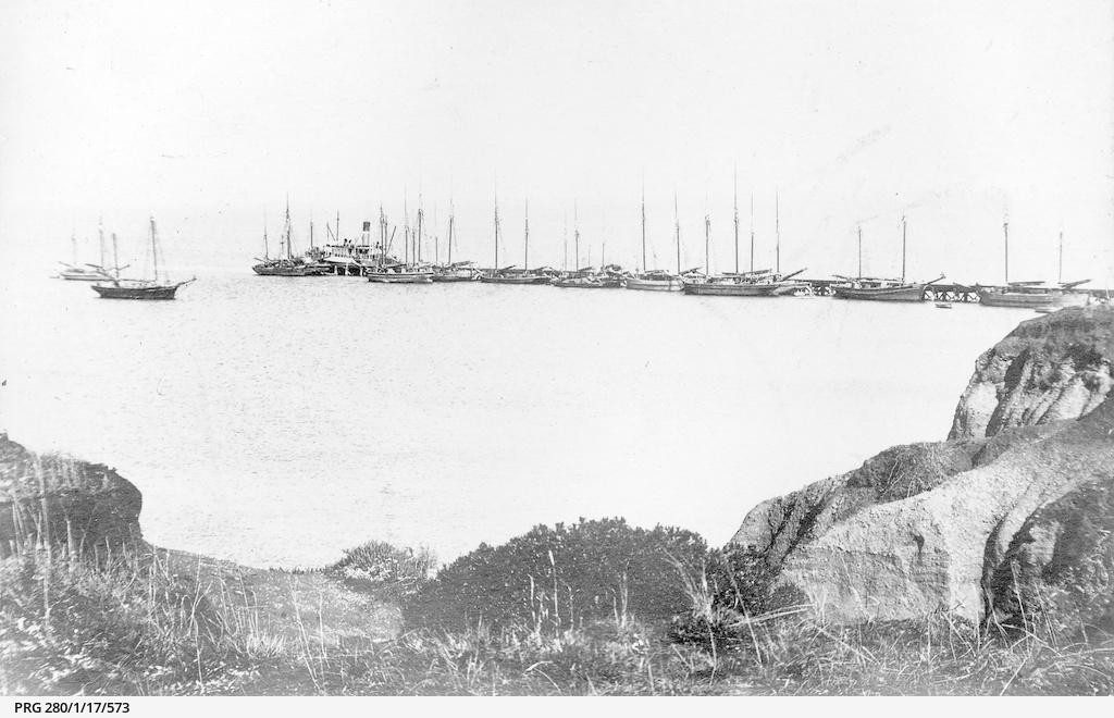 Grain ships at Ardrossan jetty