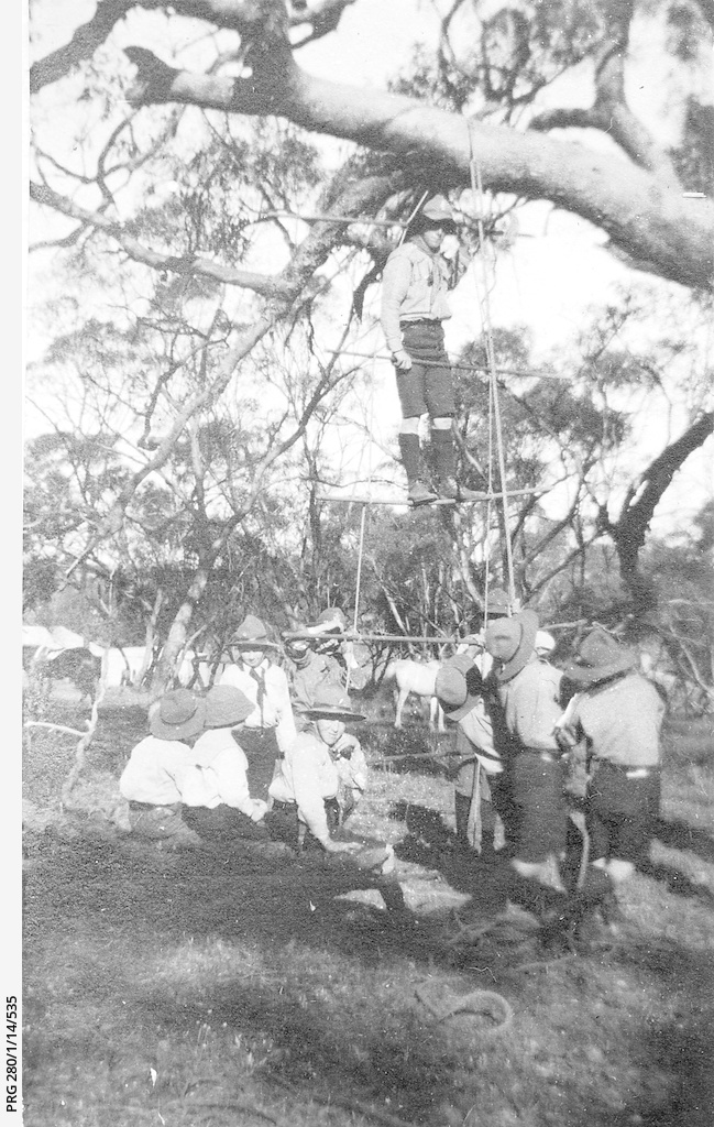Boy Scouts constructing a ladder