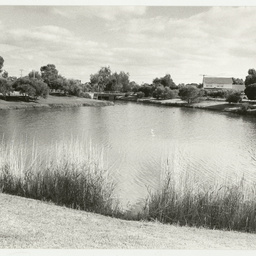 Photographs relating to Messenger Press : nature sites