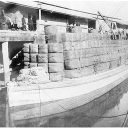 P.S. Bantam at Echuca wharf