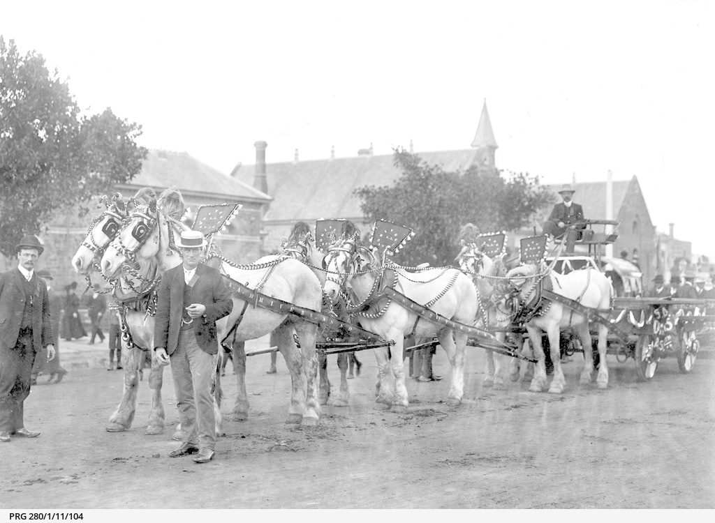 Decorated horses and wagon ready for Labor Day in South Australia