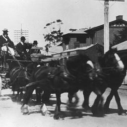 Horse drawn vehicles in Salisbury