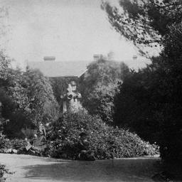 Adelaide Views : Botanic Gardens
