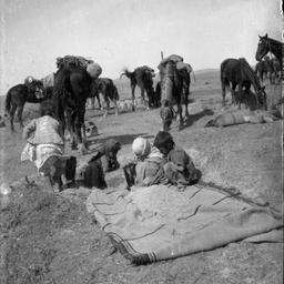 Grain dump at Beersheba.