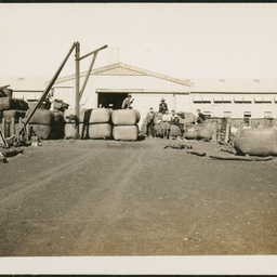 Woolshed at Bulgannia Station