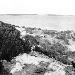 A.H. Ross's shack at Nine Mile Point, The Coorong