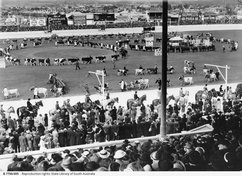 Parade of prize winners at the Royal Show
