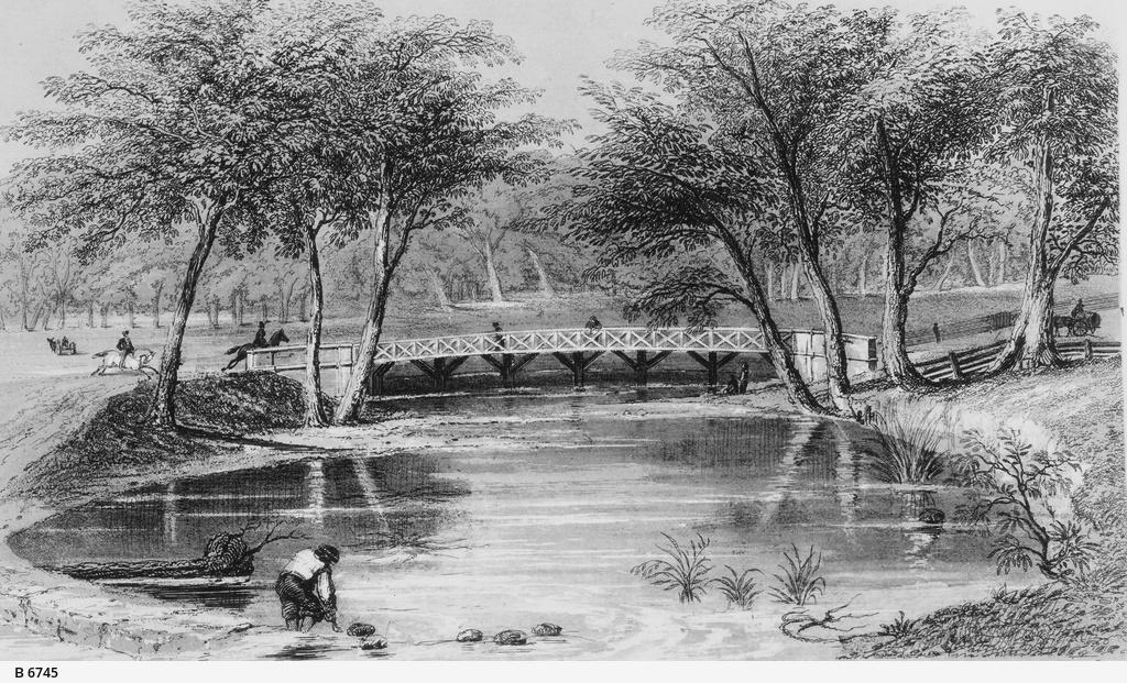Frome Bridge