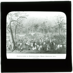 Development of Adelaide 1839-1914: series of lantern slides.