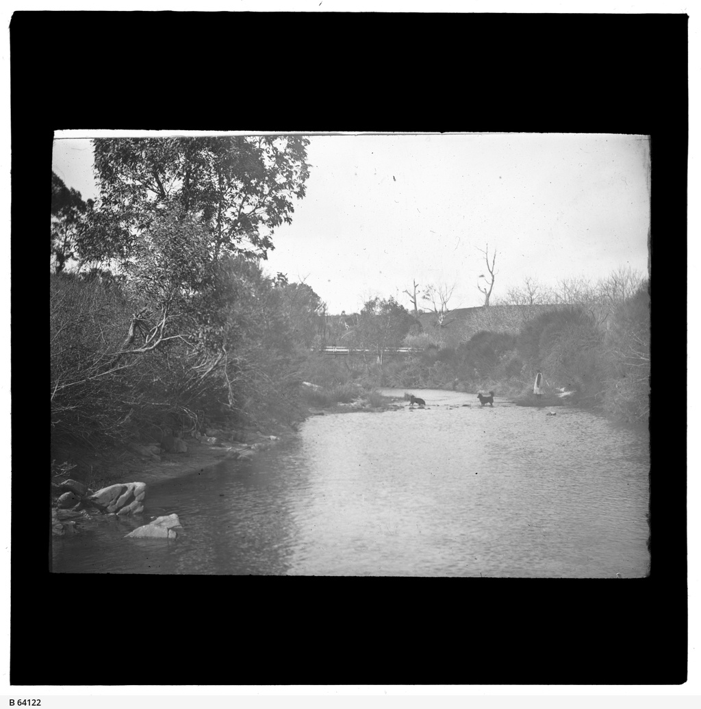 River Torrens at Gumeracha