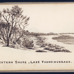 Sketches by Babbage : Lake Younghusband