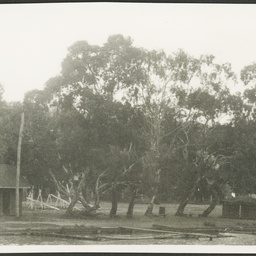 Photographs Of W A Robjohns Photograph State Library Of South Australia