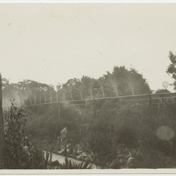 Overhead sprinklers watering the Maluka Beds in Wittunga farm garden