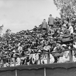 Crowd at a tennis final