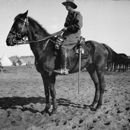 Soldier on a horse.
