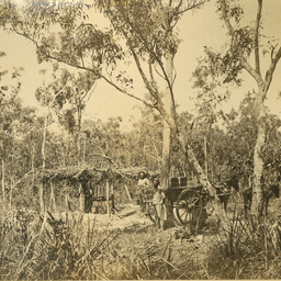 Sweet Samuel White 1825 1886 Find State Library Of