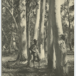 Photos of the Heysen family and their home