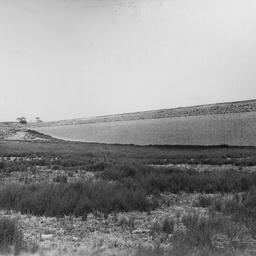 Happy Valley Reservoir : Main embankment
