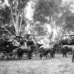 Visitors to South Australian countryside in horse drawn vehicles