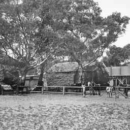 Farm near Smithfield