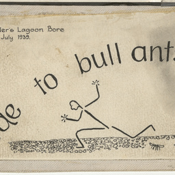 Ode to bull ants