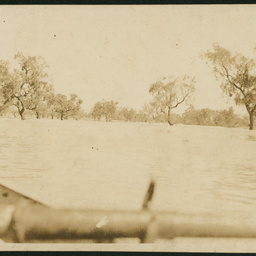 Coopers Creek in flood