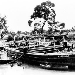 Moorabin barge alongside Alfred sunk in River Darling