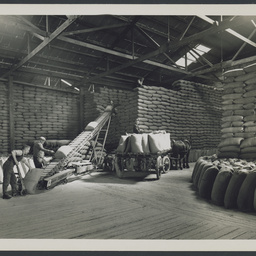 Interior of a wheat shed at Port Adelaide