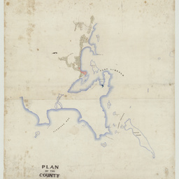 Plan of the County of Flinders [cartographic material]